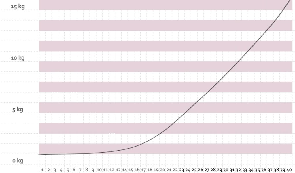 Kurve Gewichtszunahme Schwangerschaft